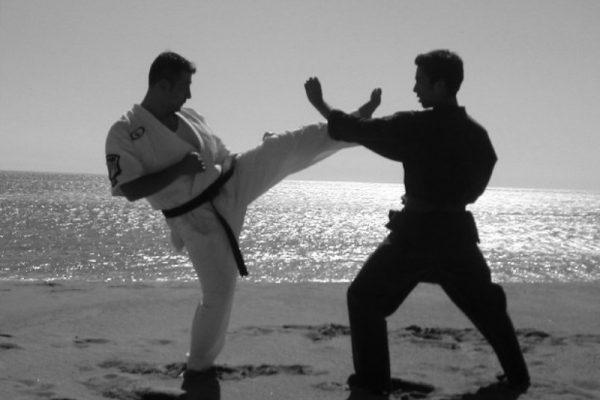 Patadas del Kenpo Karate