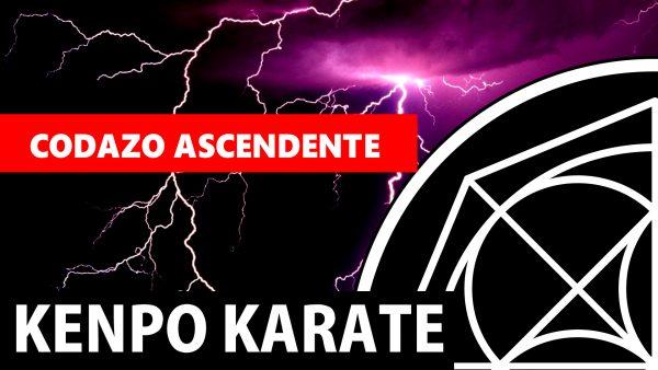Codazo Ascendente en Kenpo Karate