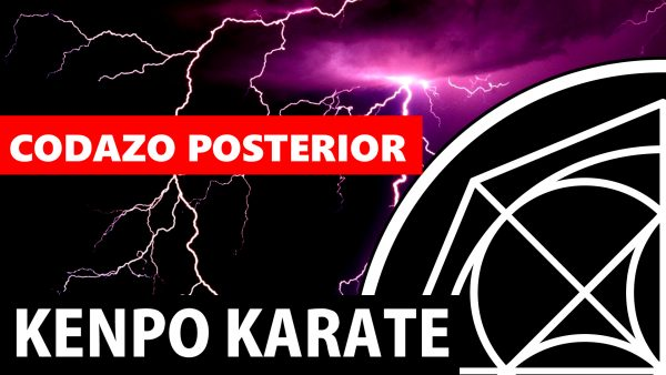 Codazo Posterior en Kenpo Karate