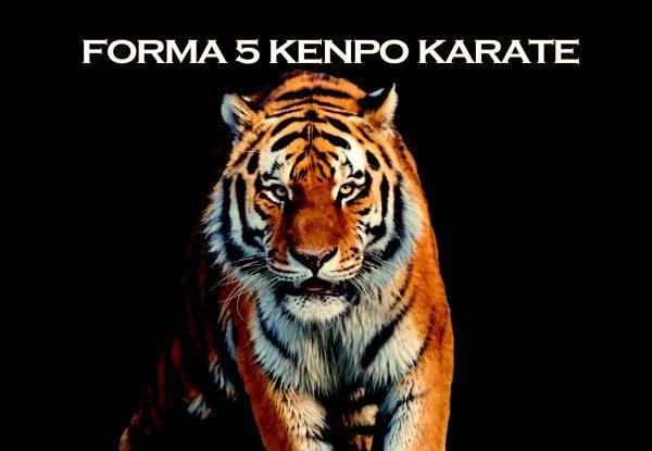 Forma 5 en Kenpo Karate