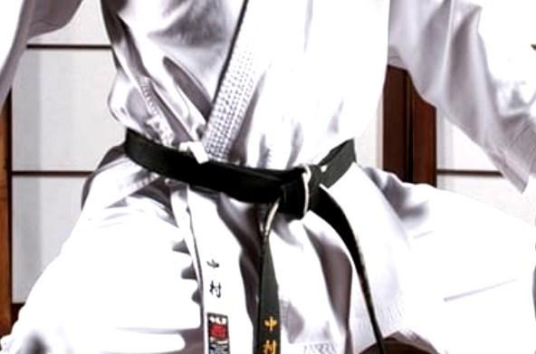 Karate Goju-Ryu