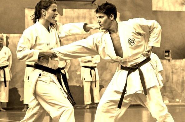 Karate Shito-Ryu