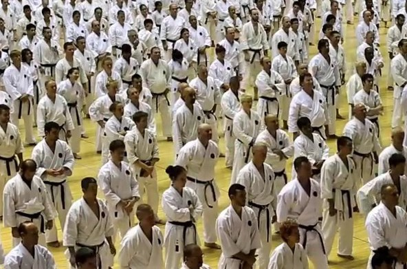 Karate Wado-Ryu