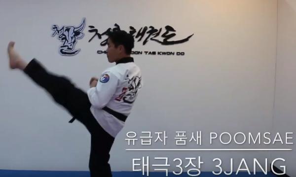 Poomsae Taegeuk 3 Jang