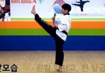 Taegeuk I Jang