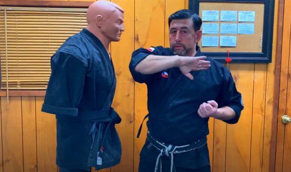 Codazo Externo en Kenpo Karate