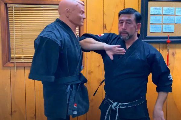 Codazo Interno en Kenpo Karate
