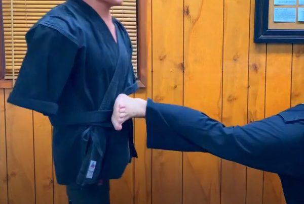 Patada Lateral Penetrante en Kenpo Karate
