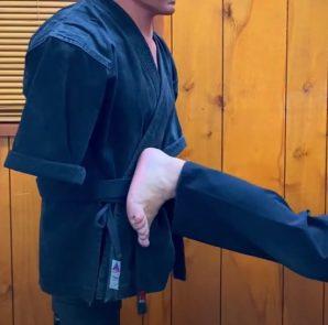 Patada Posterior Penetrante en Kenpo Karate