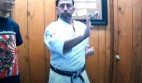 Shotei Uke - Bloqueo con la palma de la mano